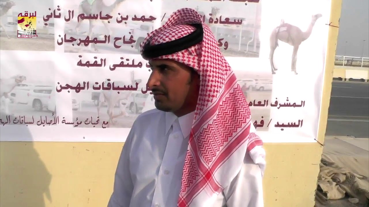 تغطية خاصة لسباقات الهجن الصيفية من ميدان الشحانية  ختامي قروب ملتقى القمه للصغار ٢١-٨-٢٠١٧