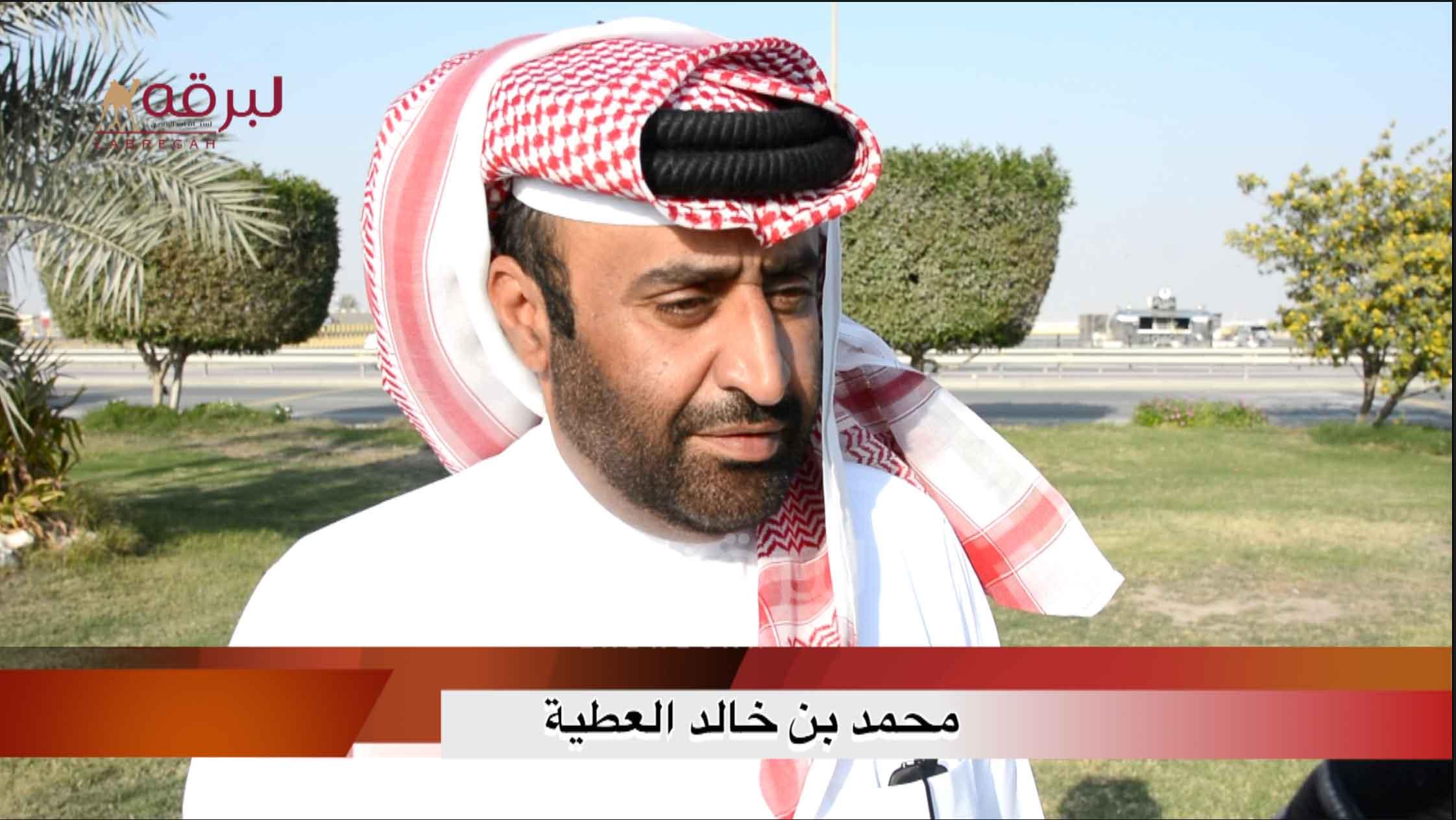 لقاء مع محمد بن خالد العطية.. الشلفة الذهبية حقايق بكار « عمانيات » الأشواط المفتوحة  ١٨-١-٢٠٢١