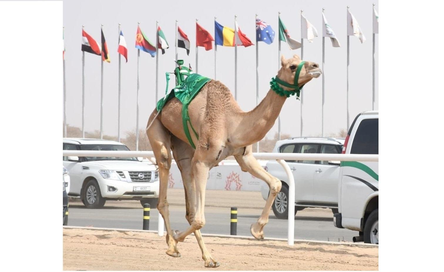 """""""عز"""" تهدي صاحب السمو الملكي الأمير تركي بن محمد ناموس الحيل مفتوح"""